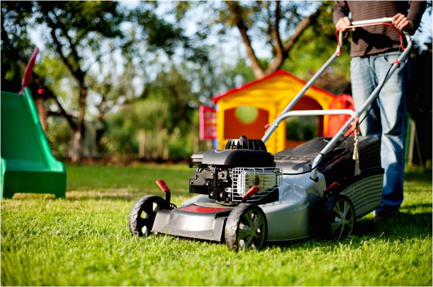 Lawn Mowing for Sale